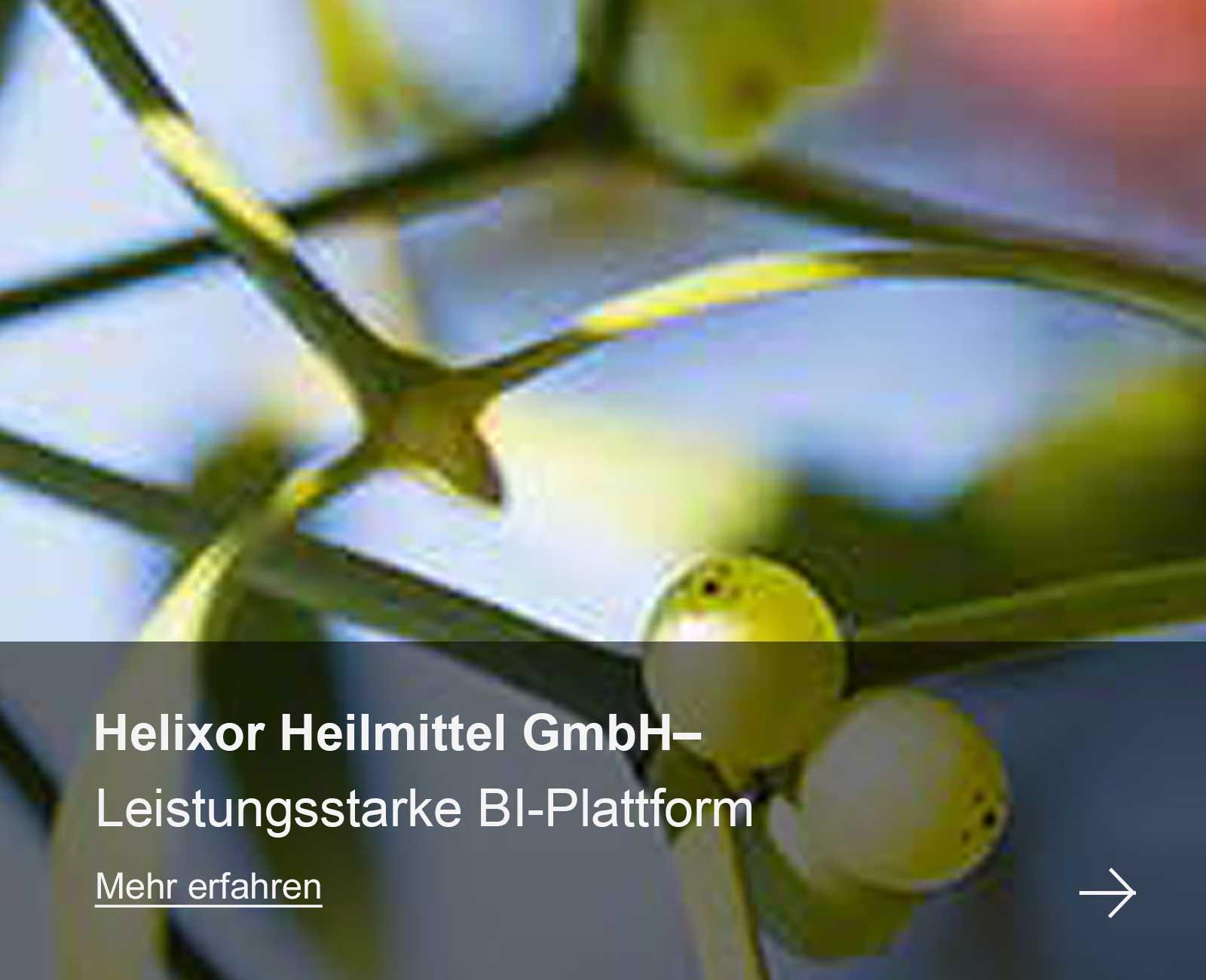 Helixor Heilmittel GmbH– Leistungsstarke BI-Plattform